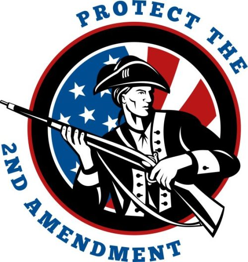 NX_american_revolutionary_rifleside_protect2nd