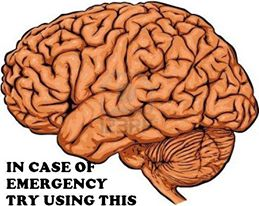 emergency brain