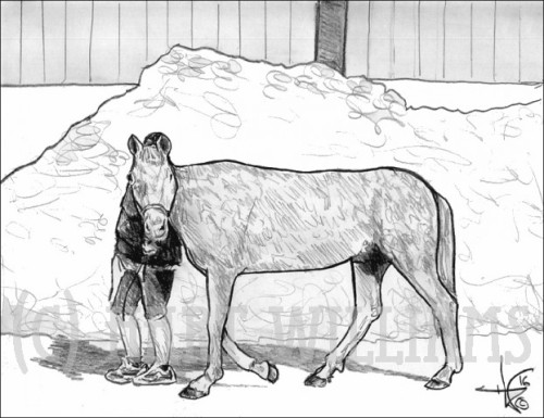horsute