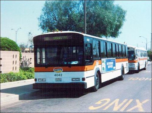 octd-buses-80s