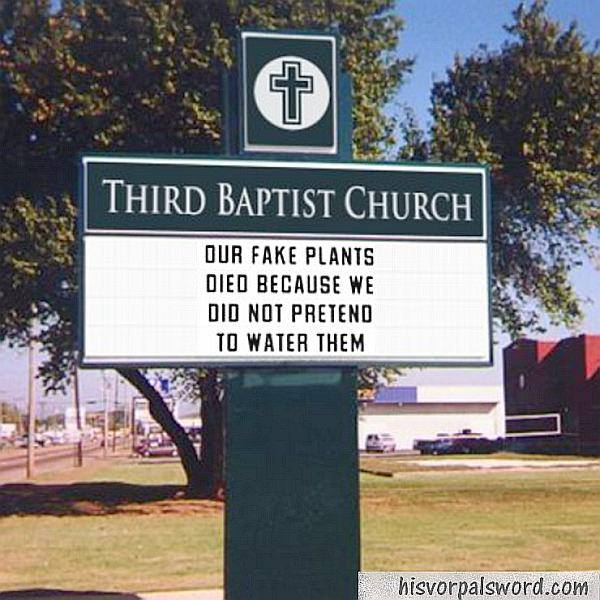 fake plants church